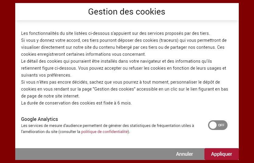 fenêtre choix cookies
